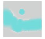 Rio Jean Photography logo